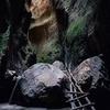лучшие фото Андрей Штибер