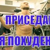 реклама у блоггера superbiceps