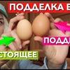 реклама в блоге madam_papaya