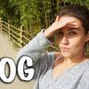 реклама в блоге darya_budnimatreshki