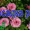 лучшие фото moi_domik_v_derevne