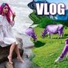 реклама на блоге Даша Граф