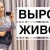реклама на блоге alena.pogrebnyak