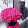 фото на странице Юлия Счастливая