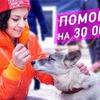 реклама в блоге chihuasophieanny_magik