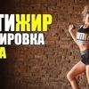 реклама в блоге fitonysha