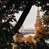 реклама на блоге Дмитрий Сурженко