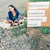 реклама у блоггера Ольга Зацепина