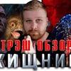 заказать рекламу у блоггера Илья Карпенко