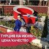 реклама на блоге Ольга Турицына