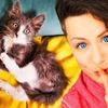 реклама на блоге chihuasophieanny_magik