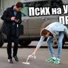 заказать рекламу у блоггера ivanefirov