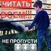 реклама на блоге Ирина Crazy.lira