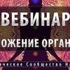реклама у блоггера ruslan_gabets