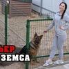 разместить рекламу в блоге prozotova