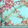 лучшие фото Анна Чернигова