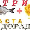 лучшие фото Анатолий Бордиян
