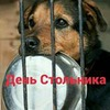 фотография Оля Pohudelka_pp