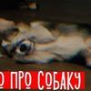 реклама у блоггера l1zzka