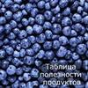 реклама у блоггера Юлия Леночкина