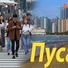 реклама у блоггера Елена Ли