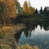 лучшие фото Галина Степ