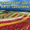 лучшие фото sergeydolya