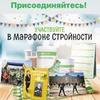 заказать рекламу у блоггера Елена Раскина