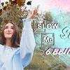 разместить рекламу в блоге vdavankova