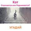 лучшие фото Андрей Огоньков