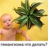 фото Дарья Демихова