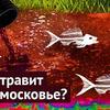 заказать рекламу у блоггера varlamov