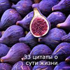 фото на странице Юлия Леночкина