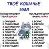 фото на странице Анастасия Колосок-Третьякова