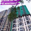 заказать рекламу у блоггера Оля Попова
