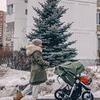 реклама на блоге Дарья Стабецкая