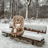 фотография Татьяна Трофимова