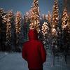 лучшие фото Андрей Свистунов