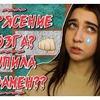 заказать рекламу у блоггера Ольга Стукалюк