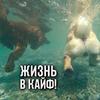 фото на странице Глеб Корнилов