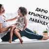 разместить рекламу в блоге Екатерина Ализарчик