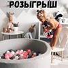 реклама у блоггера Александра Лысенко