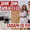 реклама на блоге katyushka_tyan