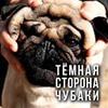 реклама у блоггера Глеб Корнилов