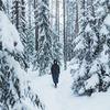 лучшие фото Вадим Ветров