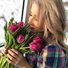 реклама в блоге Алиса Шиповская