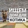 лучшие фото Ксения Шевелева
