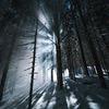 фотография Андрей Свистунов