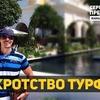 реклама у блоггера ssimonov100