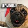 заказать рекламу у блоггера Глеб Корнилов